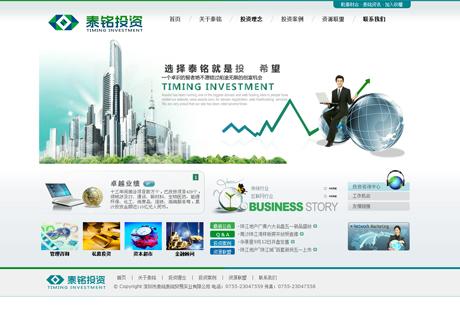 深圳市泰銘投資有限公司